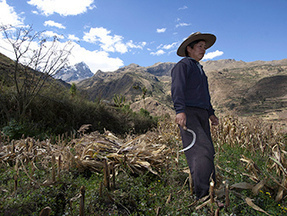 Rural communities around the world will be hit hardest by climate change -- report - Environment & Energy Publishing | Agroecology | Scoop.it