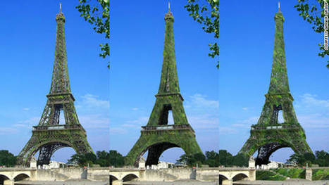 Could Eiffel Tower become world's largest tree? | New Civilizations | Scoop.it