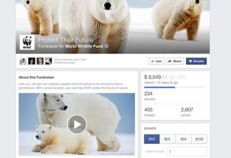 Facebook lance un outil de collecte de fonds | Ressources associatives : bénévolat, financements, mesure de l'impact social, boite-à-outils | Scoop.it