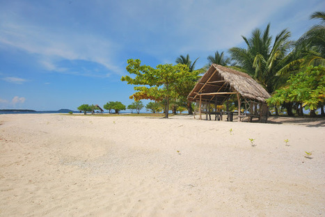 Digyo Island, a hidden paradise | Philippine Travel | Scoop.it