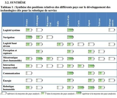 L'avenir de la robotique en France et dans le monde | Robotique de service | Scoop.it
