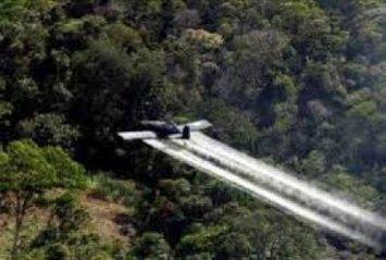 GLIFOSATO, La guerra química: muerte y desplazamiento | Agua | Scoop.it