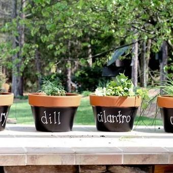 Make Chalkboard Planters | Gardening Life | Scoop.it