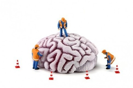 Get Inside Your Head: How Knowing Your Brain Can Make You a Better Leader  by Bruna Martinuzzi | Language,literacy and numeracy in all Training and assessment | Scoop.it