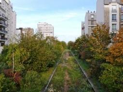 La petite ceinture : on nous propose plus de verdure à Paris Est ?  PARIS 12e | Parisian'East, la communauté urbaine des amoureux de l'Est Parisien. | Scoop.it