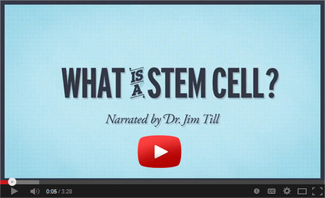 360 Stem Cell & Regenerative Medicine Newsletter- March 3, 2014 | Stem-Cells | Scoop.it