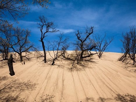 The Mystery of Why This Dangerous Sand Dune Swallowed a Boy | Read-Think-Do | Scoop.it