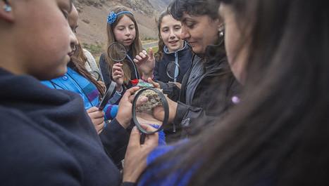 Científicas crean juego para atraer a niñas a la ciencia | Investigación Educativa | Scoop.it