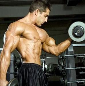 Entrenamiento para agregar volumen a tus bíceps y tríceps | Camino al Culturismo | Ayuda en el gym. | Musculación | Scoop.it