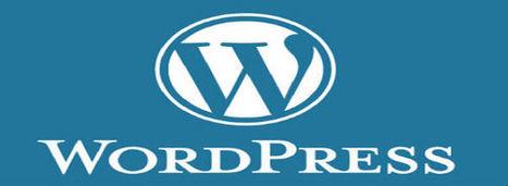 Wordpress Para Novatos – Zona de Tecnología | WordPress | Scoop.it