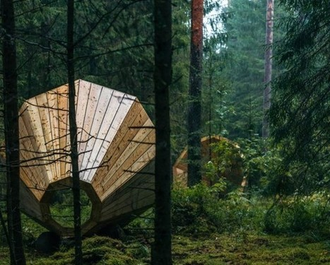 Amplifier les bruits de la forêt - Journal du Design | DESARTSONNANTS - CRÉATION SONORE ET ENVIRONNEMENT - ENVIRONMENTAL SOUND ART - PAYSAGES ET ECOLOGIE SONORE | Scoop.it