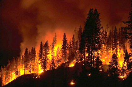From California to Wisconsin, Record-Breaking Wildfire Season Has Begun | EcoWatch | Scoop.it