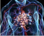 Immunotherapy data heralds new era of lung cancer treatment | 21st Century Innovative Technologies and Developments as also discoveries, curiosity ( insolite)... | Scoop.it