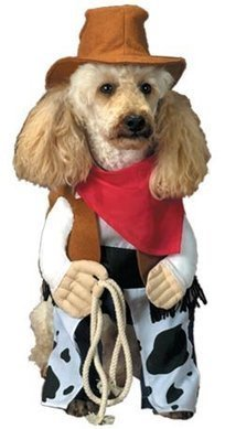 Dog Costumes for Small Dogs-Ideas | Halloween Costumes | Involvery | Scoop.it