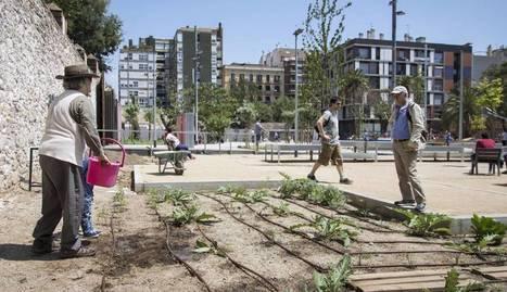 Un parc provisional en ple Eixample tutelat pels veïns   Usos temporals per a espais buits   Scoop.it