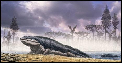 Un fracaso evolutivo: un animal de cuatro patas que no podíacaminar   Science Matters   Scoop.it