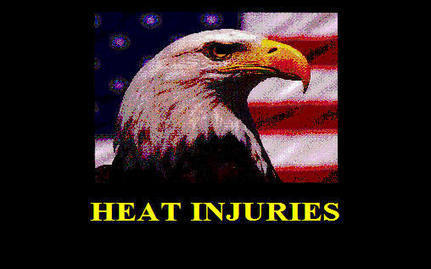 Heat Injuries (ArmyStudyGuide.com)   OH&S, Defence and I   Scoop.it