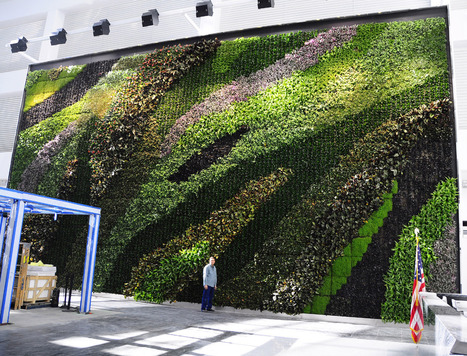 NYC's Largest Living Wall Alleviates Sick Building Syndrome | Sick Building Syndrome News | Scoop.it