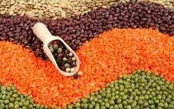 Beans Consumption Helps Reduce Blood Pressure, Heart Disease Risk | Lethbridge Chiropractic Care for Family, Personal or Business Wellness | Scoop.it