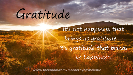 The power of gratitude - Two little exercises that will change your life | How To Succeed In Life | Scoop.it