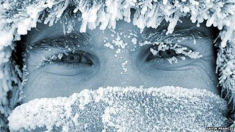 Antarctica book named best of year   Culture Scotland   Scoop.it