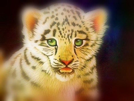 White Tiger | InspiredStream is A new Media Hub Live and Uploading from Artists All Over the World | Scoop.it