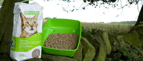 Biodegradable Cat Litter And The Use of Eco-Friendly Pet Products | Information on Cat Litter | Scoop.it