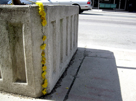 """Guerrilla Gardening: """"Outside the Planter Boxes"""" / Issue 4   flânerie   Scoop.it"""