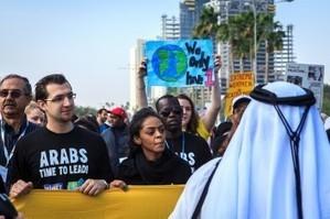 Resultado desalentador para los bosques en Doha, pero REDD+ todavía puede avanzar | Agua | Scoop.it
