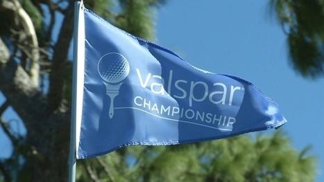 Valspar Championship Round One Video Recap | PGA TOUR | Salamander Sentinel: Final Edition | Scoop.it