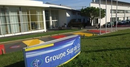 ESC LaRochelle veutconvertir les entreprise françaises àl'«action learning» | Manageris | Scoop.it