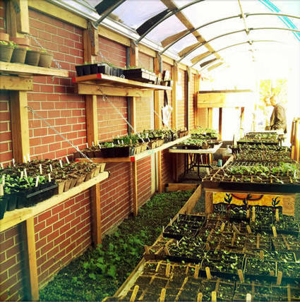 Making Unprocessed Accessible & Locally Grown Through Urban Farming - Eating Rules | Vertical Farm - Food Factory | Scoop.it