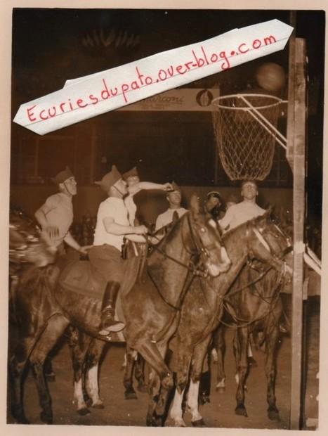 horse ball 1938   horse ball   Scoop.it