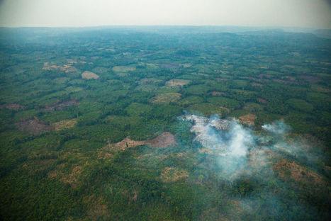 Cambodge : à la découverte du mont Kulen | Le Monde | Centro de Estudios Artísticos Elba | Scoop.it