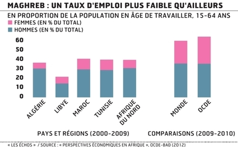 En Afrique du Nord, 41% des jeunes sont sans emploi | L'économie africaine sous toutes ses coutures | Scoop.it