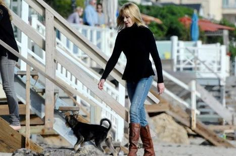 Melanie Griffith quiere la custodia de sus tres perros | Divorce Community | Scoop.it