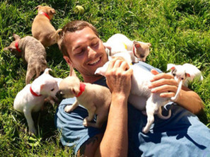 'Lucky Dog' trainer Brandon McMillan gives shelter dogs a new rep ... | Animals R Us | Scoop.it