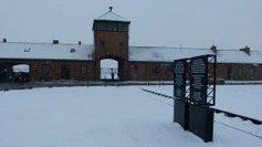 Pompidou Metz : Auschwitz-Birkenau, comment dire la mémoire historique - France 3 Lorraine | Musée d'Auschwitz | Scoop.it