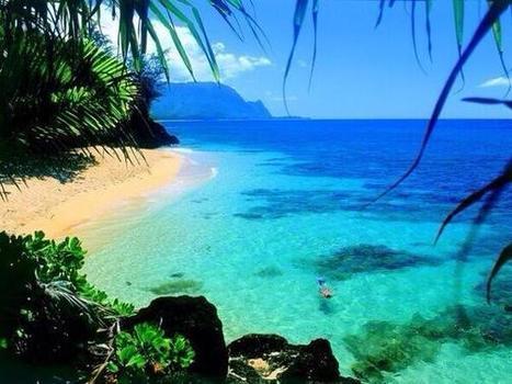 WOW Pictures on Twitter | http:www.scoop.it-t-Oahu | Scoop.it