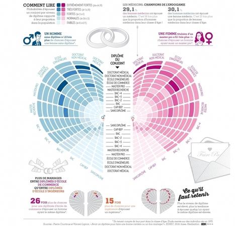 DataMatch. Les diplômés n'épousent-ils que des diplômées? | Open datas | Scoop.it