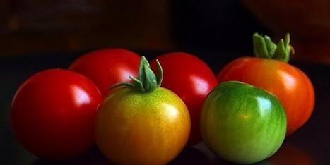 Ces 4 fruits et légumes qu'il vaut mieux manger cuit que cru | Vegactu | Alimentation - santé - environnement | Scoop.it
