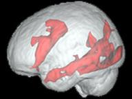 Wikinomics – Brain food: …internet use? | Peer2Politics | Scoop.it