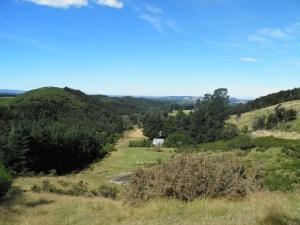 Waimakariri Zone Committee focuses on local biodiversity - Voxy | GarryRogers Biosphere News | Scoop.it