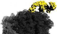 New insights to the function of molecular chaperones | Complex Insight  - Understanding our world | Scoop.it