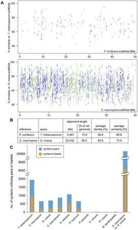 The Genome and Development-Dependent Transcriptomes of Pyronema confluens: A Window into Fungal Evolution | Plant Genomics | Scoop.it