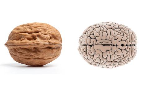 Conseil pour être en bonne santé: Tu es ce que tu manges! | Scienceosport | Scoop.it