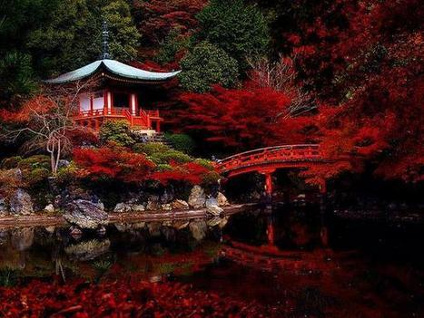 Tweet from @Ltd_To_Two | A Love of Japanese Gardens | Scoop.it