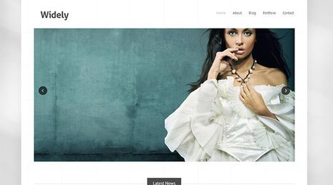 Free WordPress Themes | Writing mag | Scoop.it