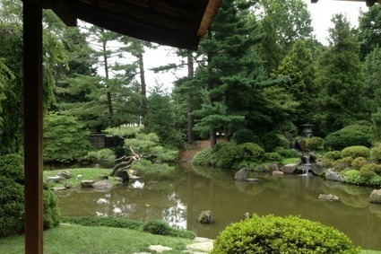 A Japanese House, Garden, and Koi Pond – in Philadelphia - Traveling Mom | Japanese Gardens | Scoop.it