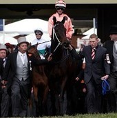 News & Features: News | Grand National | Scoop.it